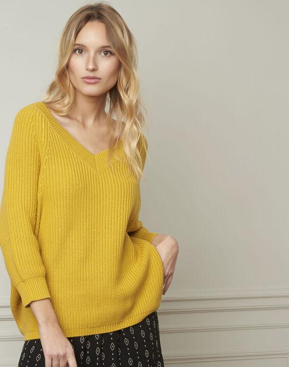 Pull anis col V en coton et laine Ankara (1) - Maison 123