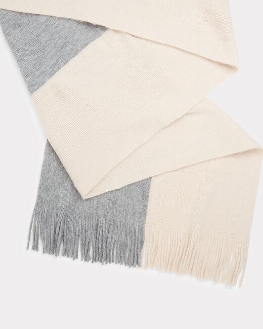 Echarpe poudre bicolore Toucan (1) - 1-2-3