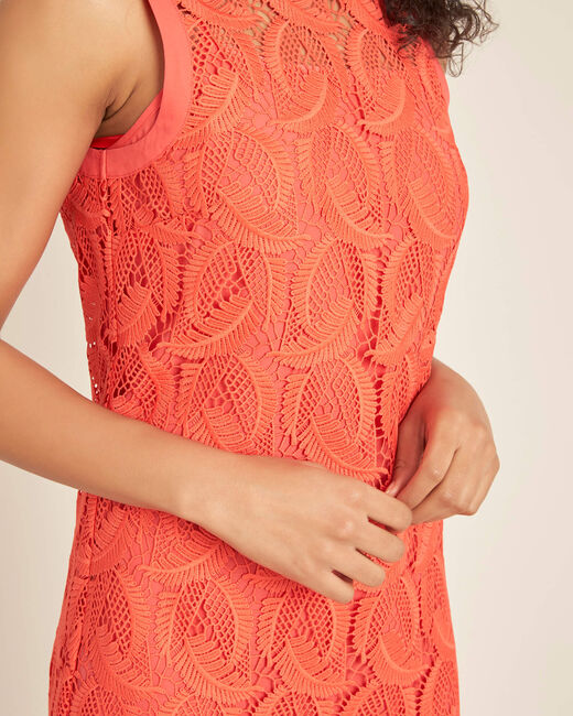 Iska coral short dress in lace (2) - 1-2-3
