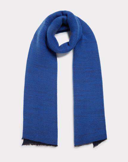 Elila royal blue scarf PhotoZ | 1-2-3