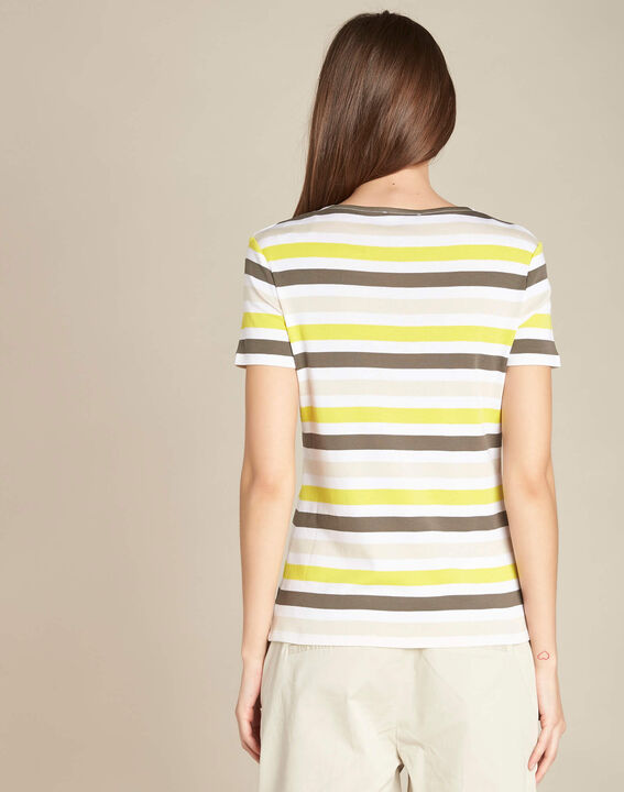 Embruns khaki striped T-shirt (4) - 1-2-3